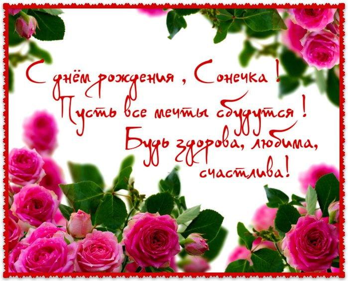 С днем рождения соня красивые поздравления проза